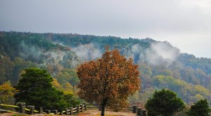 Roll The Windows Down And Take A Drive Down Mount Magazine Scenic Byway In Arkansas