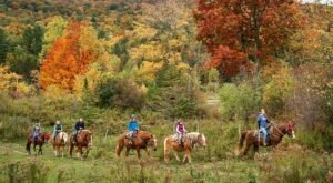Take A Fall Foliage Trail Ride On Horseback At Lajoie Stables In Vermont