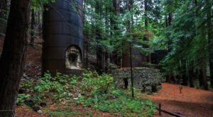 You Can Hike To 19th Century Ruins In The Redwood Forest At Limekiln State Park In Northern California