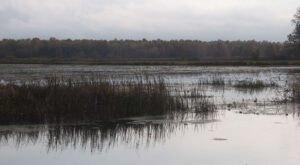 Escape To Mosquito Creek For A Beautiful Northeast Ohio Nature Scene