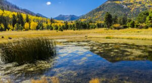 Fall Is The Perfect Time To Visit This Historic Mountain Town In Arizona