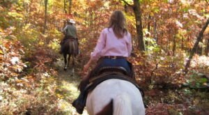 Take A Fall Foliage Trail Ride On Horseback At Echo Lake Stables In New Jersey