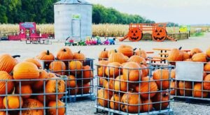 Nelson's Pumpkin Patch And Corn Maze In North Dakota Is A Classic Fall Tradition
