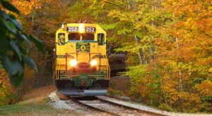 There's Nothing Quite As Magical As The Tunnel Of Trees You'll Find On The Conway Scenic Railroad In New Hampshire