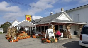 This One-Of-A-Kind Orchard And Cider Mill Near Detroit Serves Up Fresh Homemade Pie To Die For