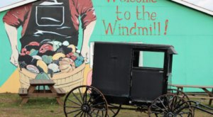 The Tiny Amish Town In New York That's The Perfect Day Trip Destination