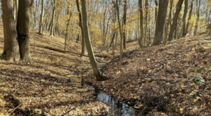This Easy Fall Hike In New Jersey Is Under 2 Miles And You'll Love Every Step You Take