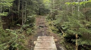 These 7 Trails In Maine Are Best For The Adventurous Hiker