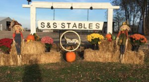 Take A Fall Foliage Trail Ride On Horseback At S & S Stables, LLC In Kansas