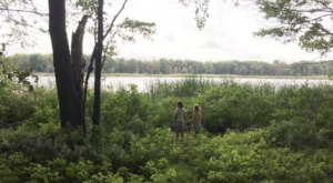 Every Season Is Spectacular At Sand Point Nature Preserve, A 220-Acre Wonderland In Michigan