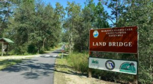 The Landbridge Trailhead In Florida Is The Very First Wildlife Bridge In The State