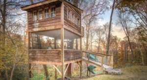 Feel Like A Kid Again When You Stay At The Trailside Treehouse, A Unique Virginia Airbnb With Its Own Slide