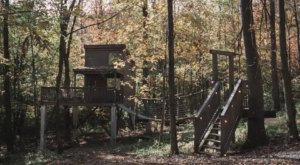 Feel Like A Kid Again When You Stay At The Trailside Village, A Treehouse Airbnb In Ohio With Its Own Swinging Bridge