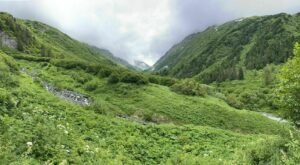 Head Out On The Victor Creek Trail And Explore The Alaskan Mountains From Up High