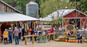 The 7 Best Alabama Farms To Visit This Fall