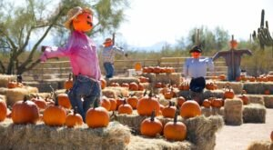 The Pumpkin Patch At MacDonald's Ranch In Arizona Is A Classic Fall Tradition