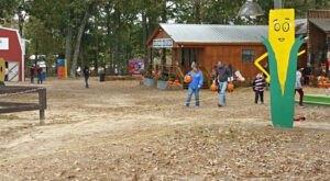Fall Family Fun Abounds At Alabama's Sand Mountain Corn Maze And Pumpkin Patch