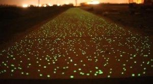 An Iowa Trail With 3,000 Pounds Of Solar Powered Rocks Is America's Longest Glow-In-The-Dark Trail