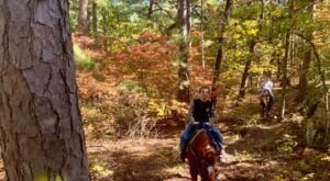 Take A Fall Foliage Trail Ride On Horseback At Robbers Cave Stables In Oklahoma
