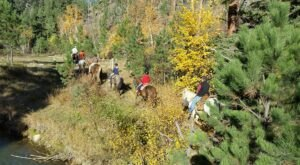 Take A Fall Foliage Trail Ride On Horseback At Andy's Trail Rides In South Dakota