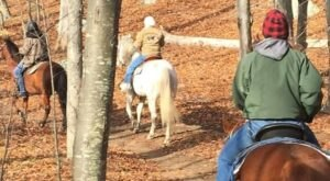Take A Fall Foliage Trail Ride On Horseback At Sunset Stables In Rhode Island