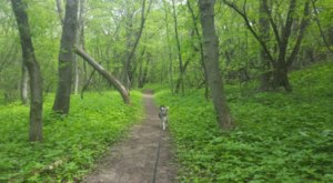 The Sica Hollow Trail Of The Spirits In South Dakota Is One Of The Scariest Haunted Hikes In The U.S.