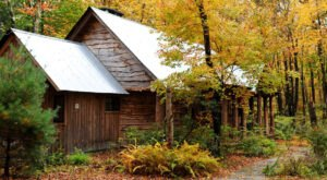 Experience The Fall Colors Like Never Before With A Stay At The Winvian Farm Cottages In Connecticut