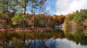 7 Of Alabama's Most Beautiful Vistas To Experience This Fall Season