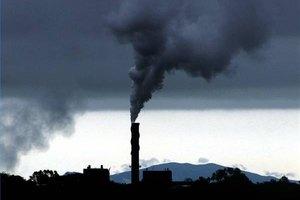 Efectos de la contaminación en los animales