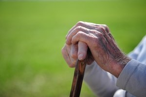 Services aimed at the senior population do not come cheaply.