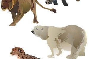 Names of Endangered Animals