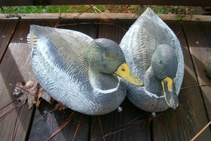 How to Paint Duck Decoys