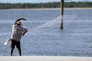 How to Catch Mullet Fish in Florida