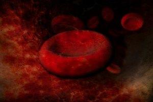 ¿Cuál es el origen del tipo de sangre B?