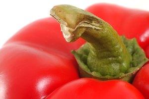 Lista de alimentos que comen los veganos