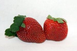 Lista de frutos rojos