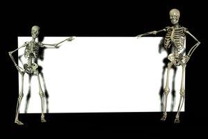 Esqueleto masculino Vs. esqueleto femenino