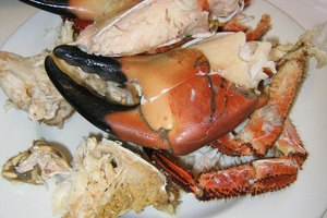 How to Reheat Stone Crab Claws