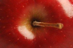 El vinagre de manzana versus el vinagre de manzana orgánico