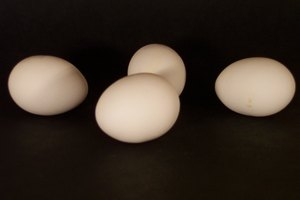 How to Boil Organic Eggs