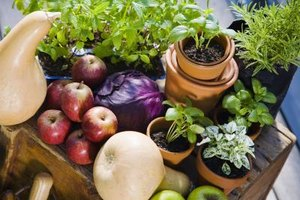 Fruits and vegetables are healthy and allergen-free.