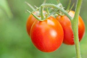 Frutas que contienen ácido salicílico