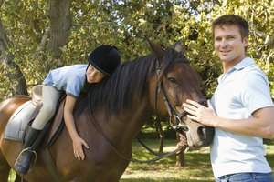 Horse Riding Instructor Certification