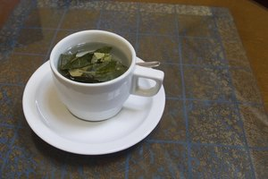 The Effects of Coca Tea