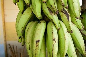 Frutas y vegetales con almidón