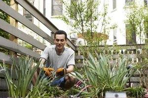 Help your garden enthusiast best friend enjoy his passion.