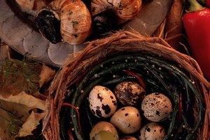 Información nutricional de los huevos de codorniz