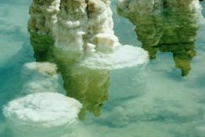 The salt content of the Dead Sea is so high that the waters cannot support marine life.