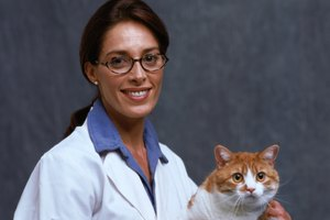 What High School Science Classes Are Required for Veterinarian Sciences?