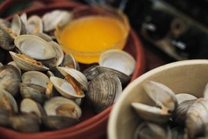 Clams are easy to cook and a delicious addition to any meal.